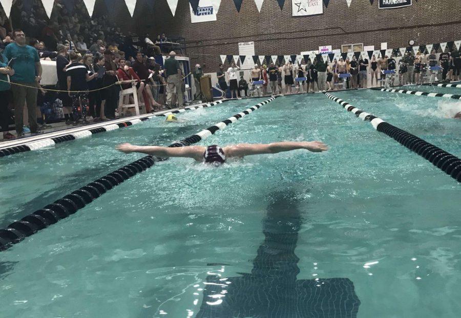 Swim+race