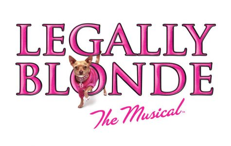 OMG You Guys! Legally Blonde Auditions!