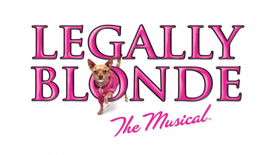OMG+You+Guys%21+Legally+Blonde+Auditions%21