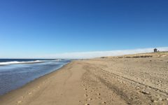 Looking east at Race Point Beach in Provincetown, MA.