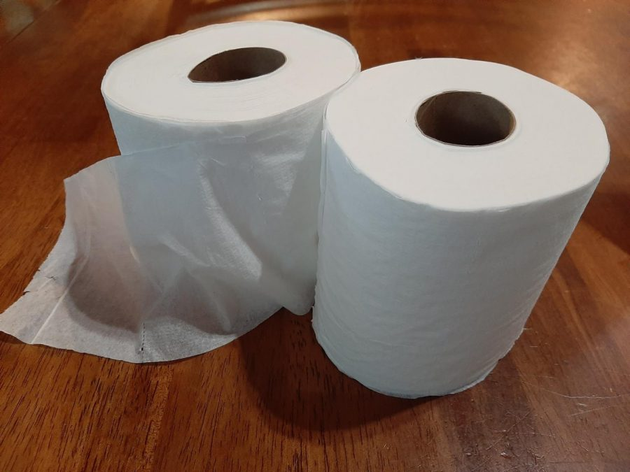 Two+rolls+of+Toilet+Paper+