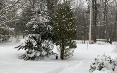 Snow Days: Are They Already Gone?